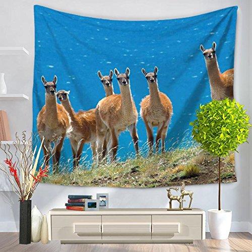 KHKJ Tapiz Colgante de Pared de Alpaca, Manta de decoración para el hogar, sábana artística, Tapiz Hippie para Sala de Estar, Alfombra de Camping A4 200x150cm