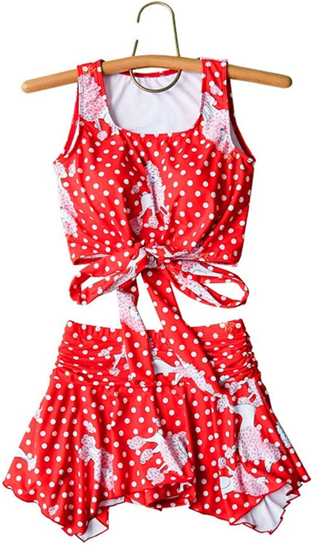 TianLeY Swimwear Bikini Swimsuit,Bikini Set. Swimsuit Little Chest hot Spring Swimsuit