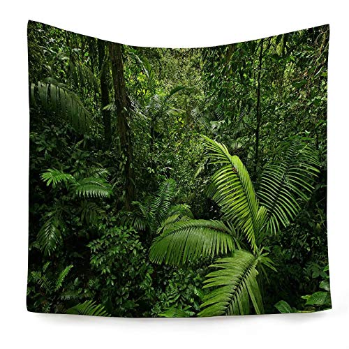 KnSam - Tapiz decorativo para pared (100 x 75 cm), diseño de bosque