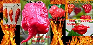 Seeds Combo Carolina Reaper Naga Viper Red Ghost Moruga Red Scotch Bonnet Hot Fresh Seeds Get 10 Seeds #EL01YN