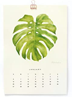"""""""The Silence Of Plants"""" Art Print - 2019 Medium Wall Calendar for office - A4 (8.3"""" x 11.7"""") - Featuring Botanical Painting in Watercolor - Green Leaf Part Two - Gift of Spring"""