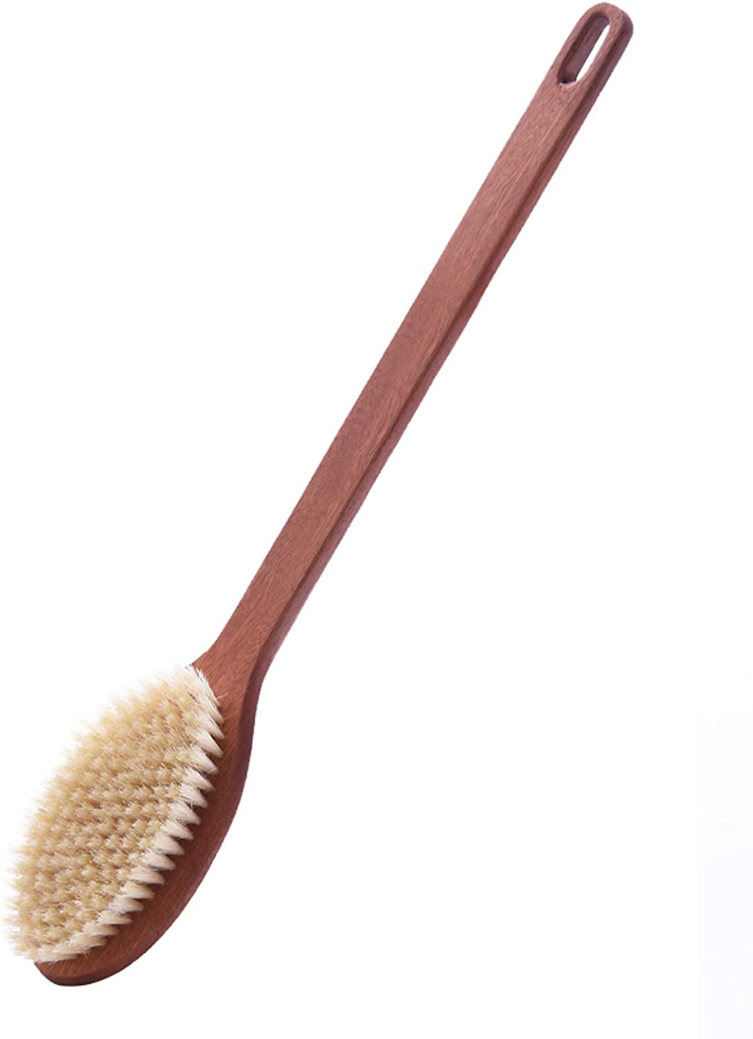 klm All items free shipping Shower Brush ,Can Be Used Dry store The for Brush. Wet and