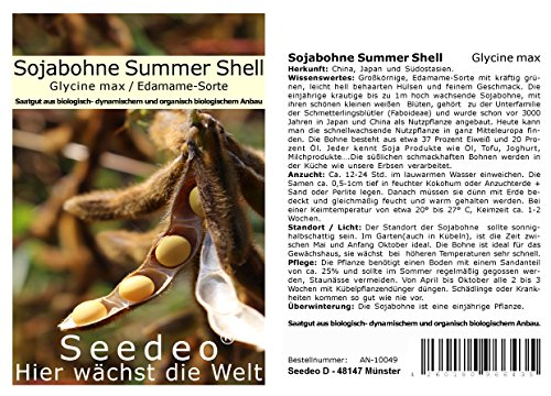 Seedeo® Sojabohne Summer Shell (Glycine max) ca. 30 Samen BIO