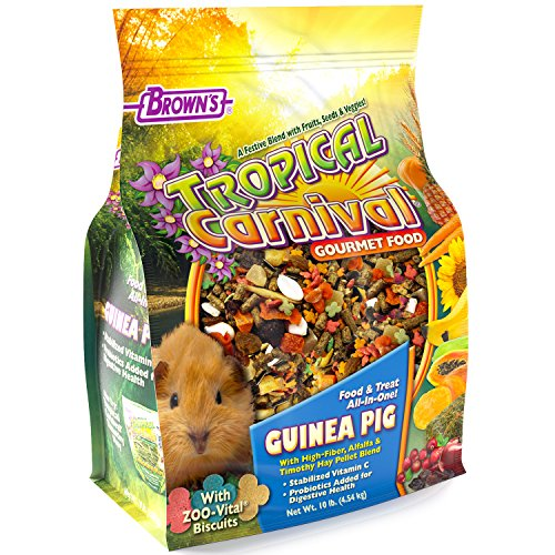 F.M. Brown's Tropical Carnival Gourmet Guinea Pig Food with Alfalfa and Timothy Hay Pellets - Vitamin-Nutrient Fortified Daily Diet