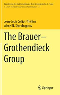 The Brauer–Grothendieck Group