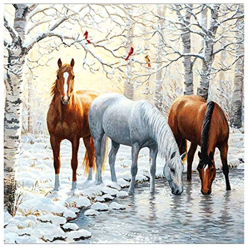 Ningning DIY 5D Diamond Painting Horse by Number Kits Winter Snow Paint with Diamond Art Animal Cross Stitch Full Drill Rhinestone Embroidery Pictures Arts Craft for Home Wall Decor Gift-12X12inch