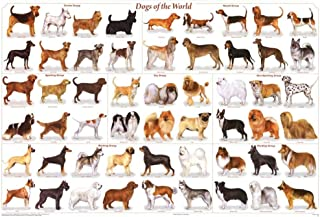 Best dog breed posters Reviews
