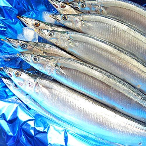 魚水島 秋刀魚 こくトロ生サンマ 刺身用 特大2kg 14〜17尾