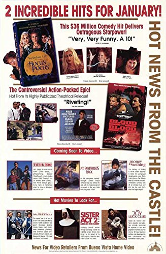 Buena Vista Promotional Poster POSTER Movie (27 x 40 Inches - 69cm x 102cm) (1993)