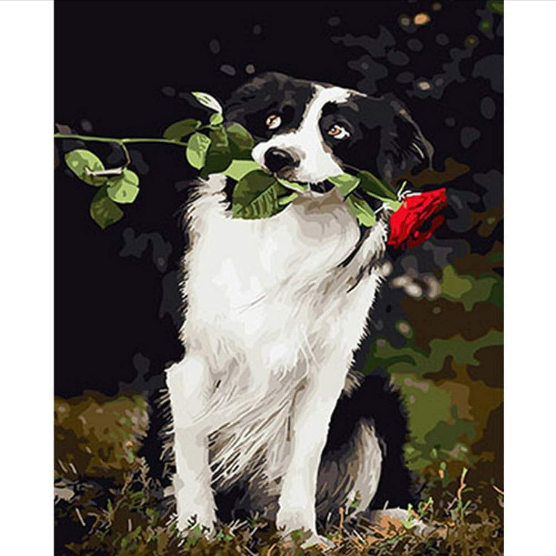 Waofe Schöne Hund Gerahmte Bilder Diy Malen Nach Zahlen Diy Ölgemälde Auf Leinwand Dekoration Wandkunst Gx26133 40X50 Cm B07PQ1BN3S   König der Quantität