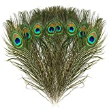 Mwoot 15pcs Plumas de Pavo Real Naturales, para la decoracin del hogar DIY Jewelry Party Arte y ms (28-32CM)
