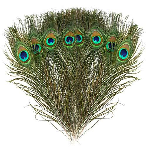 Mwoot 15pcs Plumas de Pavo Real Naturales, para la decoración del hogar DIY Jewelry Party Arte y más (28-32CM)