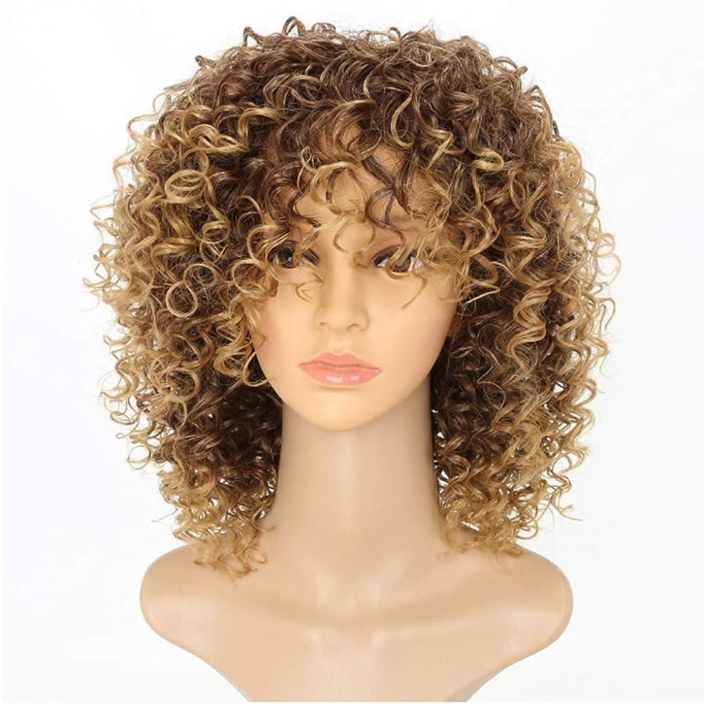 歯禁止する啓示黒人女性カーリーショートカーリー変態かつら茶色の女性ふわふわ波状のかつら自然な合成ファッションかつら