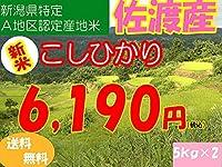 平成28年新潟県産特定産地米 (佐渡産5㎏×2)