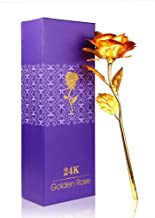 Lavanaya Silver 24K Golden Red Rose with Gift Box Best To Express Love on Valentine's Day (Purple)