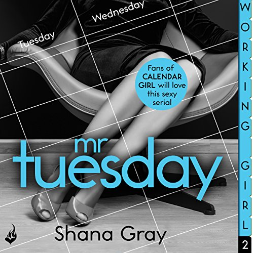 Working Girl: Mr Tuesday audiobook cover art