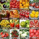 Set de Semillas de Tomate 16 x 10 semillas Tomate Mezcla 100% natural de semillas recogidas a mano de Portugal, variedades raras y antiguas, semillas con alto índice de germinación, jardín, balcón