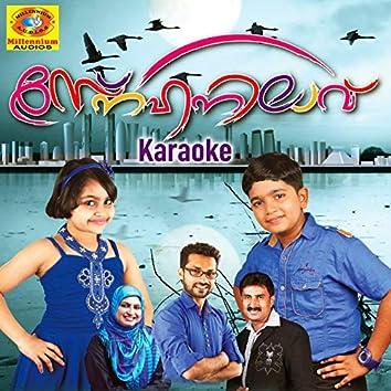 Snehanilaav Karaoke (Karaoke Version)