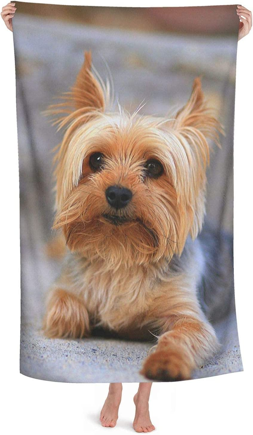 Cutest Yorkies Limited time for free shipping Dog Limited price sale Beach Towel for x 52 Absor Adults Inches 32