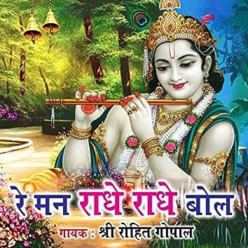 Re Man Radhe Radhe Bol - Single