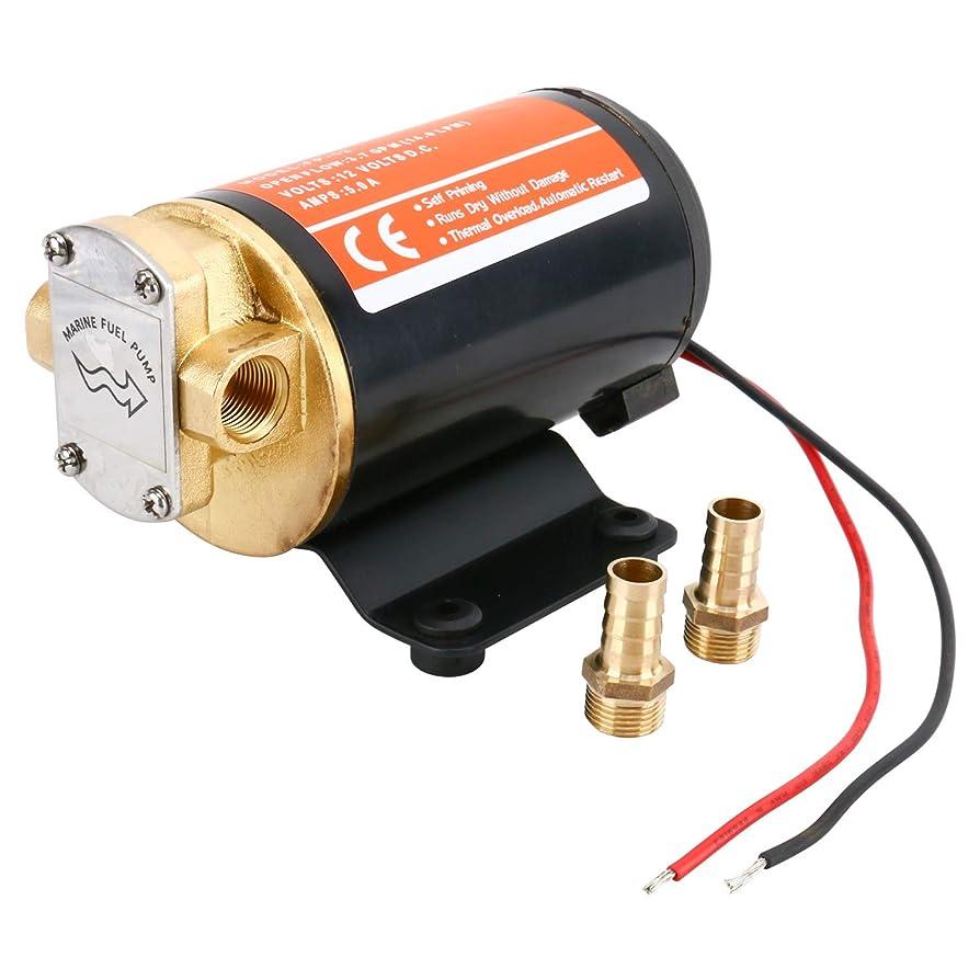 Amarine Made 12v Scavenge Impellor Gear Pump- For Diesel Fuel Scavenge Oil Transfer (Black) kiqidetayfsu5