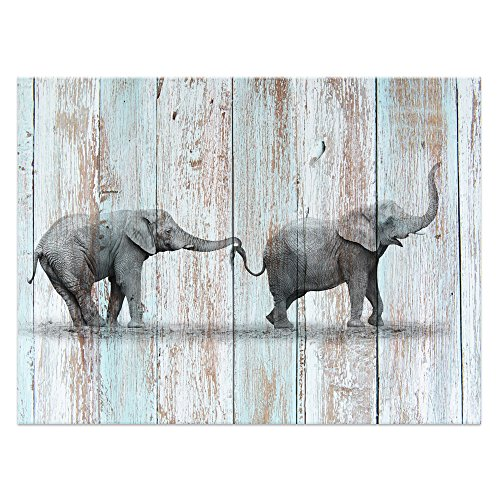 Visual Art Decor Animals Canvas Prints Elephant Wall Decor Dual View Picture on Wood Background Wall Art Decor (16'x20', Elephant)