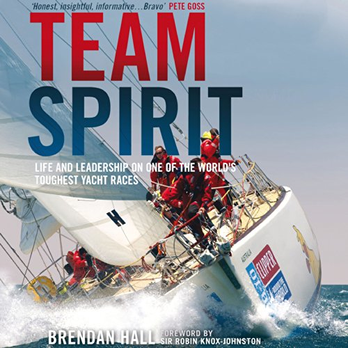 Team Spirit audiobook cover art