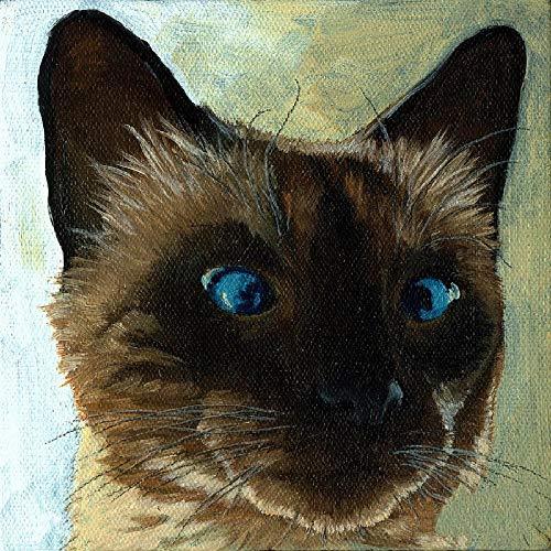 Dipingi con i numeri per adolescenti Kit di pittura a olio per gatti birmani fai da te pittura a olio disegno tela con spazzole decorazioni regali