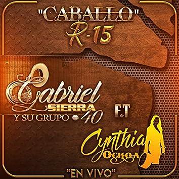 Caballo R-15 (feat. Cynthia Ochoa) [En Vivo]