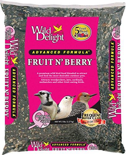 Comida para pájaros Wild Delight con frutas y bayas