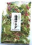 海藻問屋 海藻サラダ ( 塩蔵 ) 300g 国産 色物海藻とワカメ類 生のまま塩蔵
