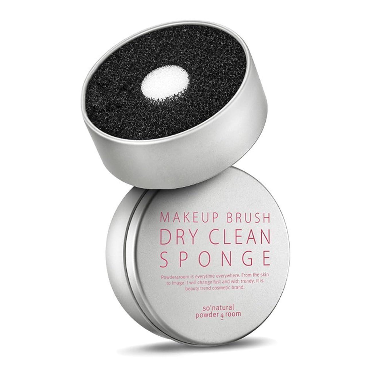 ダム政令宇宙ソーナチュラル So Natural ドライブラシクリーンスポンジ Dry Clean Sponge 水が必要ないブラシクリーナスポンジ [並行輸入品]