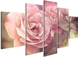 Amazonit Quadri Moderni Rosa