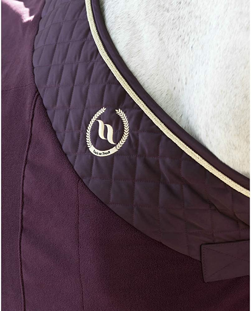 Back on Track Night Collection Fleece Blanket Ruby