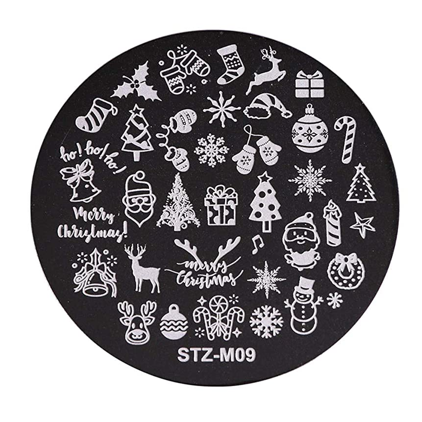 エステート透ける寓話クリスマスネイルスタンプ 雪の花 スタンププレート イメージプレート ネイルスタンプ ジェルネイル ネイルアート ネイルスタンピング 10種から選び (9)