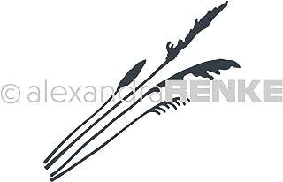Alexandra Renke Dies-poppy; Grasses