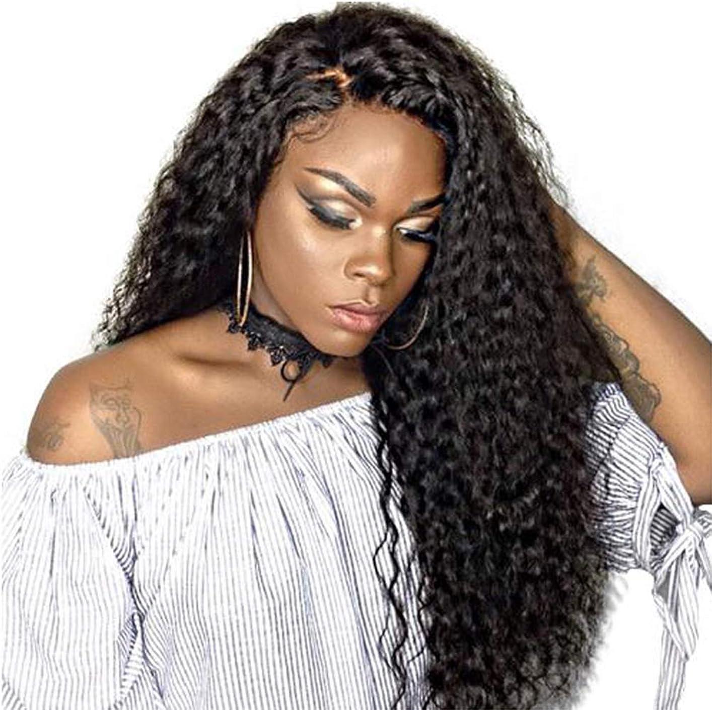 煙上回る利得女性かつら150%密度波状の長い巻き毛の合成耐熱繊維の毛