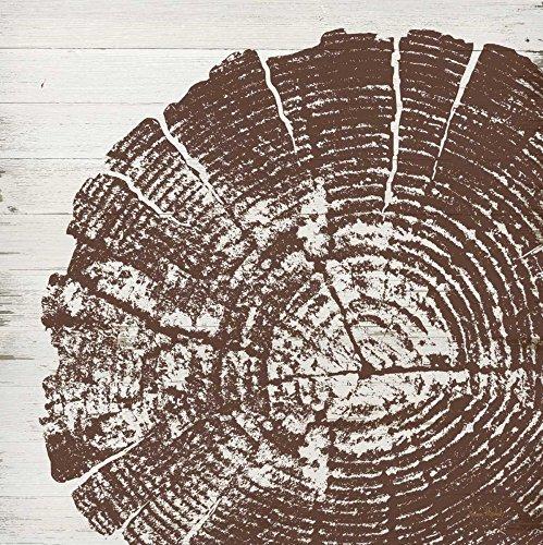 The Poster Corp Ramona Murdock – Tree Rings III Kunstdruck (30,48 x 30,48 cm)