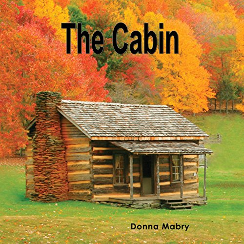 Couverture de The Cabin