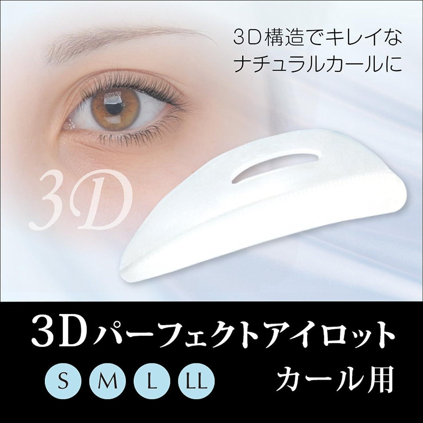 定義放棄する陰気3Dパーフェクトアイロット カール用 (LL)