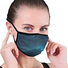 Dust Mask Capricorn Constellation Painting Washable Reusable Anti Pollution Face Mouth Mask