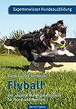 Flyball: Der rasante Mannschaftssport für Hund und Mensch