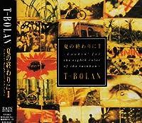 NATSU NO OWARI NI 2 2 by T-BOLAN (1994-08-06)