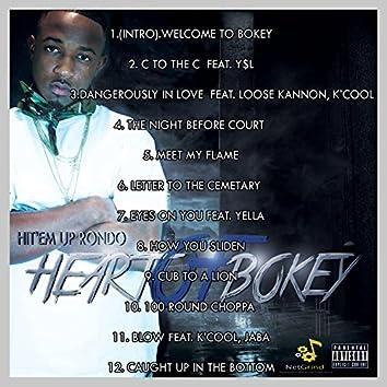Heart of Bokey
