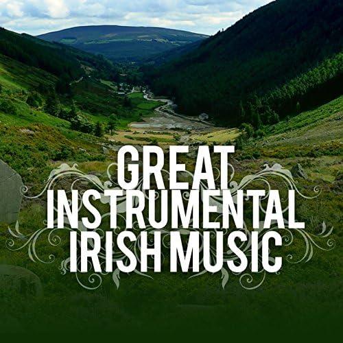 Great Irish Pub Songs & Instrumental Irish Music