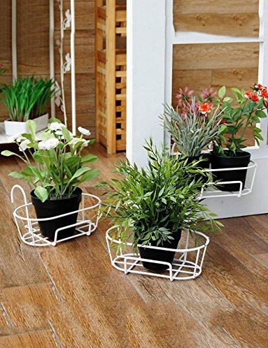 Blumenständer Plante Théâtre Fer Fleur Support geländer Montage Mural Pot Rack windowsill Pot Racks 1 Set de 3 Idée Cadeau Jardiniers