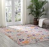 Nourison Passion Bright Colorful Bohemian Silver Area Rug 8' x 10'