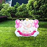 IT'S A Girl Pink Yard Signs with Stakes – Includes Crown, Elephant, and Balloon Signs – Weather-Resistant Signs and Stakes-Welcome Home Baby Lawn Sign- Gender Reveal Baby Shower