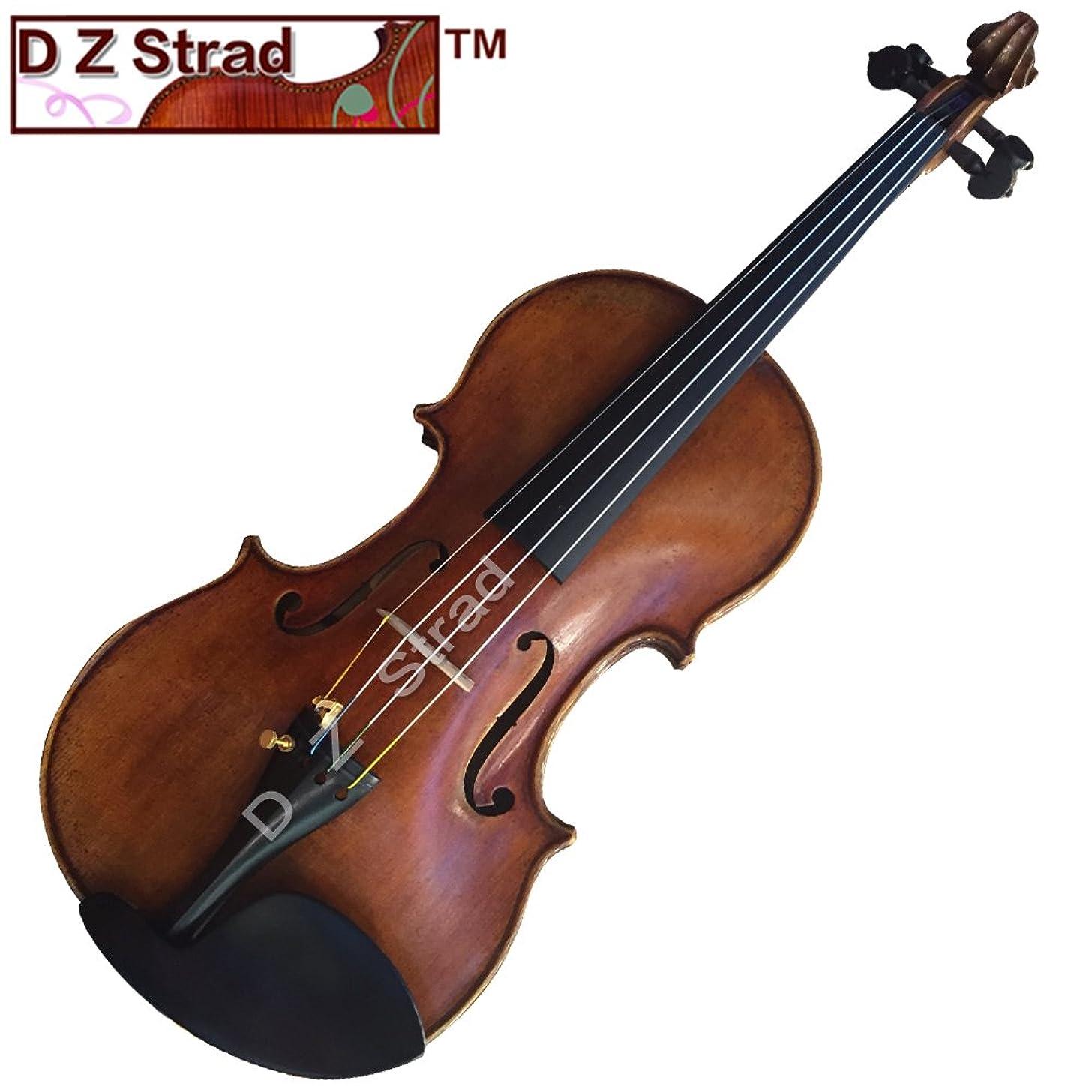 D Z Strad SV400 Violin with Case, Bow, Shoulder Rest, and Rosin