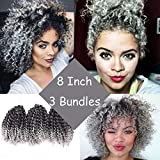 Silike Marlybob Kinky Curl Ombre Crochet Braiding Hair (3 Bundles/pack) 8'' Water Wave Crochet Hair Extensions For Women (T 1B/Grey)